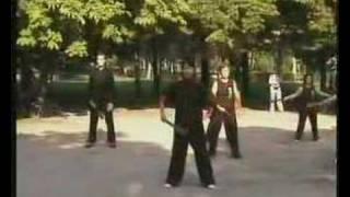 Tai Chi Kung Fu / Taiji Kung Fu Fan