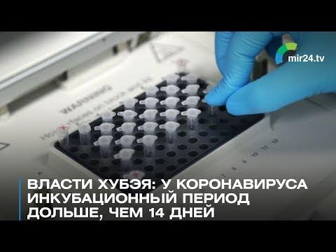 Власти Хубэя: Инкубационный период коронавируса дольше, чем 14 дней