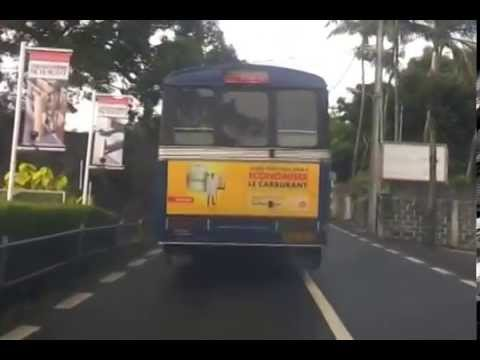 One Year Old, Heavy Smoker !!! - Mauritius, CNT Bus, DOB: June 2011.