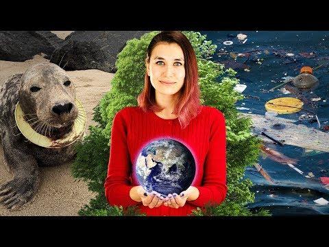 Как мы можем помочь природе