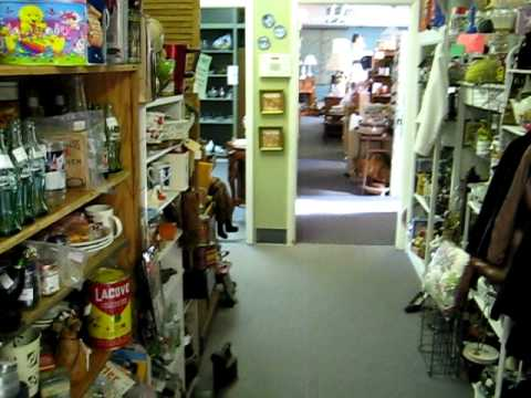 Colorado Springs Antique Gallery Tour By Jason Carr