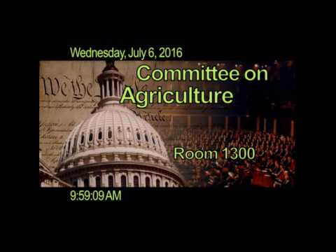 Full Committee RE: Past, Present, and Future of SNAP: Evaluating Error Rates and Anti-Fraud Measures