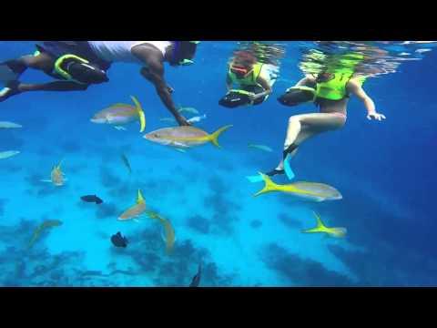 Power Snorkeling Grand Turk 2014