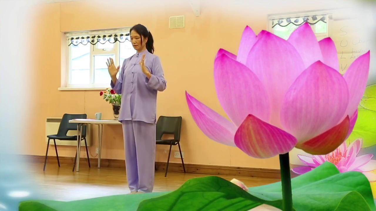 Infinite Tai Chi The Story Of The Lotus Flower Youtube