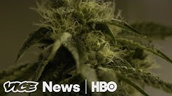 Will California Weed Growers Survive Legal Marijuana? (HBO)