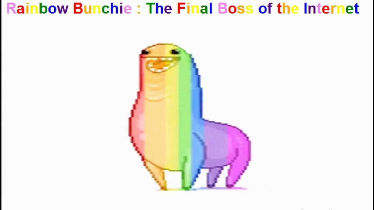 rainbow bunchie live