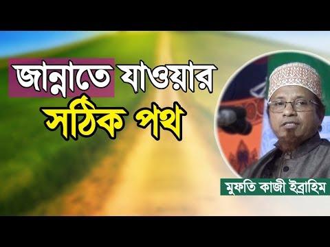 জান্নাতে যাওয়ার ১০০% সঠিক পথ কোনটা    Jannat Jawar Sothik Rasta   Mufti Kazi Ibrahim   Bangla Waz