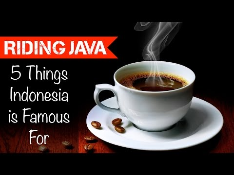 5 Things Indonesia Is Famous For | Motovlog Indonesia