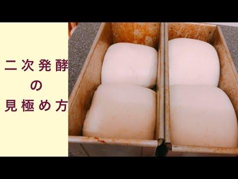 二次発酵終了の見極め方 フルーツ酵母 自家製天然酵母 パン教室 教室開業 大阪 奈良 東京 福岡 名古屋