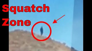 Bigfoot!!! Sasquatch!!! In the day time!!! Sept 2, 2018