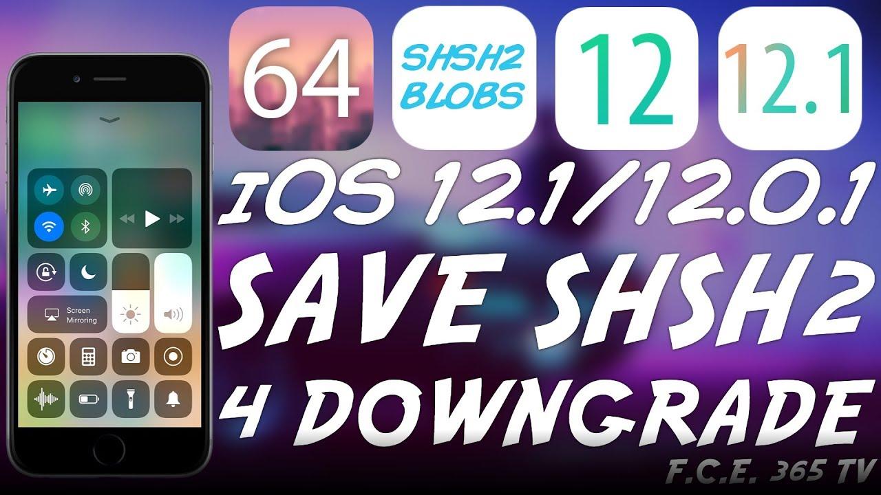iOS 12 0 1 / iOS 12 1 - How To Save SHSH2 Blobs For Downgrades  (FutureRestore)