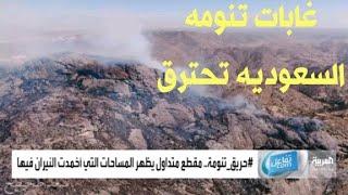 #تنومه #السعوديه تحترق #غاباتها اليوم #السعوديه #نجران #جيزان
