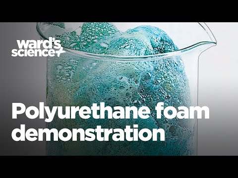 Ward's Polyurethane Foam Demonstration