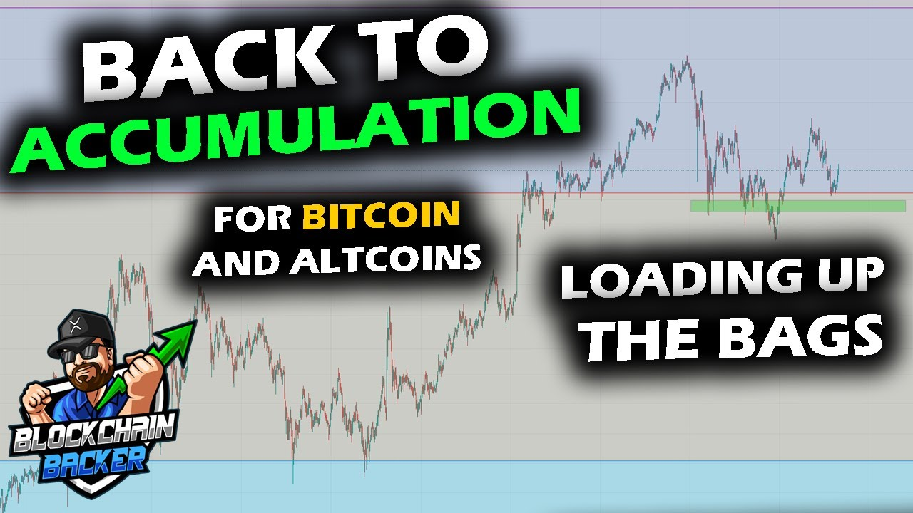 ACCUMULATING THE DIP in the Market as Bitcoin Price Chart Pulls Back Altcoins Reach Attractive Areas