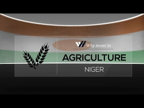 Agriculture  Niger - Why invest in 2015