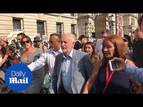 Jeremy Corbyn arrives at Trafalgar Square Trump rally - Daily Mail