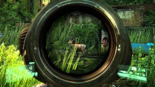 Crysis 3 maxed out 1080p Gameplay (better than PS4 and Xbox One)