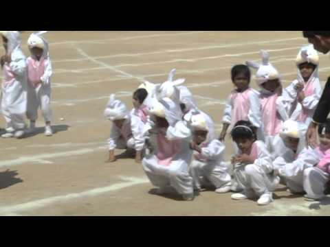 Fusco's School ICSE Bangalore Sports Day Celebration 2016 -  Part 4