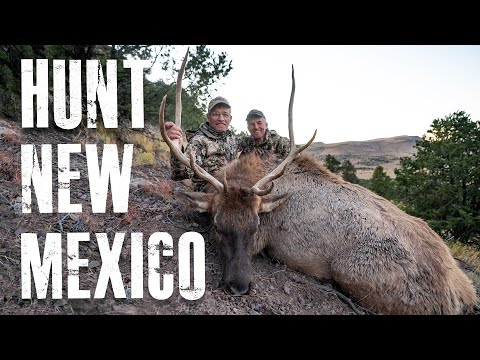 How To Hunt New Mexico
