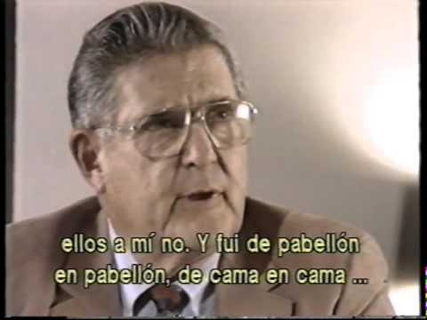 La vida después de la vida (documental)