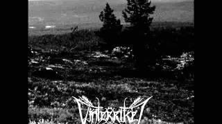 Vinterriket - Schwermutsfesseln (2015)