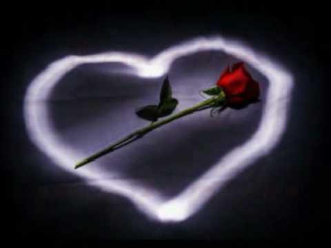 I Want to Spend my Lifetime Loving you - Tina Arena & Marc Anthony (Subtitulo español)