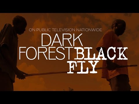 Trailer do filme Black Fly