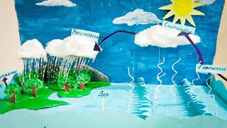 Water cycle | School project | 3D model for school exhibition