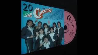 LOS CHICANOS Y SUS EXITOS   1993