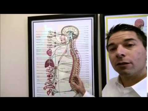 Dr.Calvin's Clinic  Part 4 Why LOW BACK pain West Valley City Salt Lake City Best Chiropractors