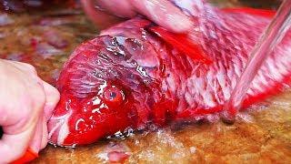 Nhật Bản mon ăn đường phố - cá mú đỏ sushi, hải sản chiên, sup