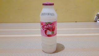 litchi juice making factory