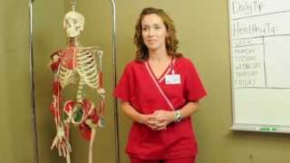 Nwacc Physical Therapy Istant Program