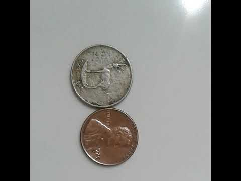 United Arab Emirates Deer coin and ONE CENT1979  RARE COINS