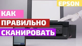 Как сканировать   На примере МФУ Epson XP-352