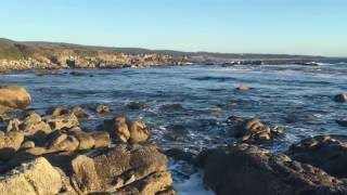Trip to Monterey, Carmel, 17 Miles Drive, Bixby Bridge, Interstate 1 4K