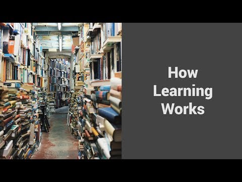 MOOC USSV101x   Metacognition and Mindset   How Learning Works
