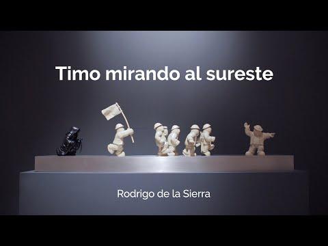 Video Rodrigo de la Sierra- Timo mirando al sureste | LHCM