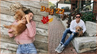 Vlogtober Day 22 // Day Of Shopping & Another Haul!