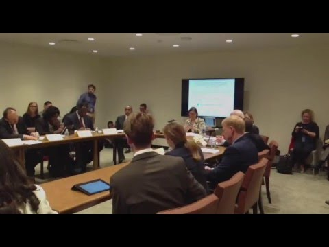Event: Effective Development Co-operation and the UN 2030 Agenda: Part 1 of 2