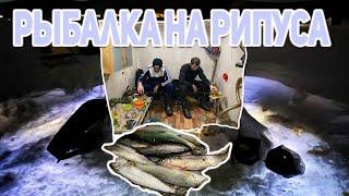 Озеро Щучье Рыбалка на Рипуса Боровое
