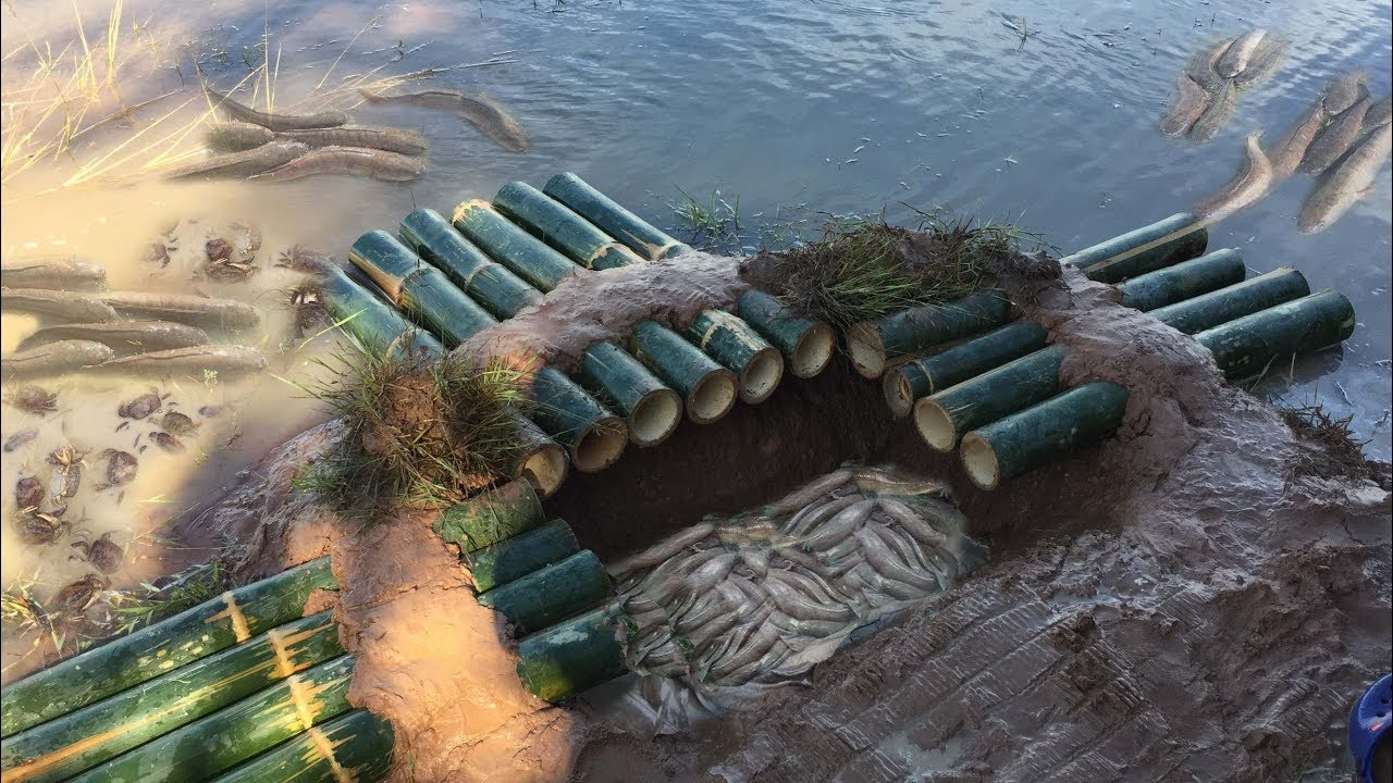 How to make big trap by deep hole and 14 bambo catching for How to make a fish trap for big fish