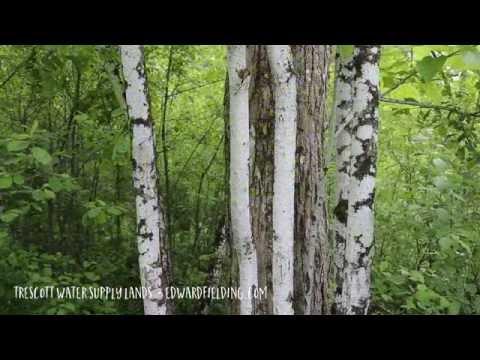 Trescott Water Supply Lands Hanover New Hampshire
