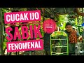 Latber Aceh Selatan Kelas Cucak Ijo Polos  Mp3 - Mp4 Download