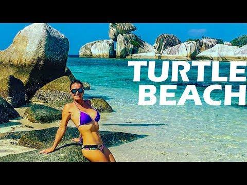 "Turtle Beach - Belitung - ""The Baths"" of Indonesia - Travel Vlog 128"
