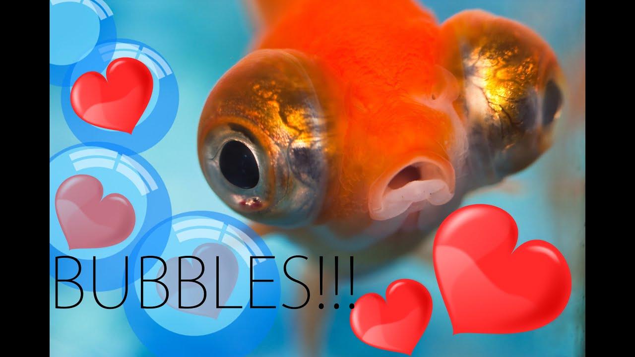 I Love Bubbles!!! - YouTube