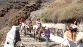 Mule Riders Coming down Santorini Greece Trail