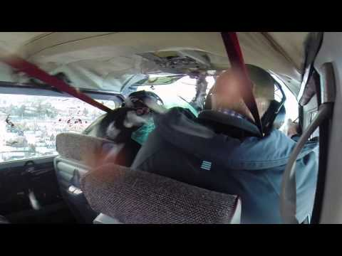 Goose Smashes Through Airplane's Windshield