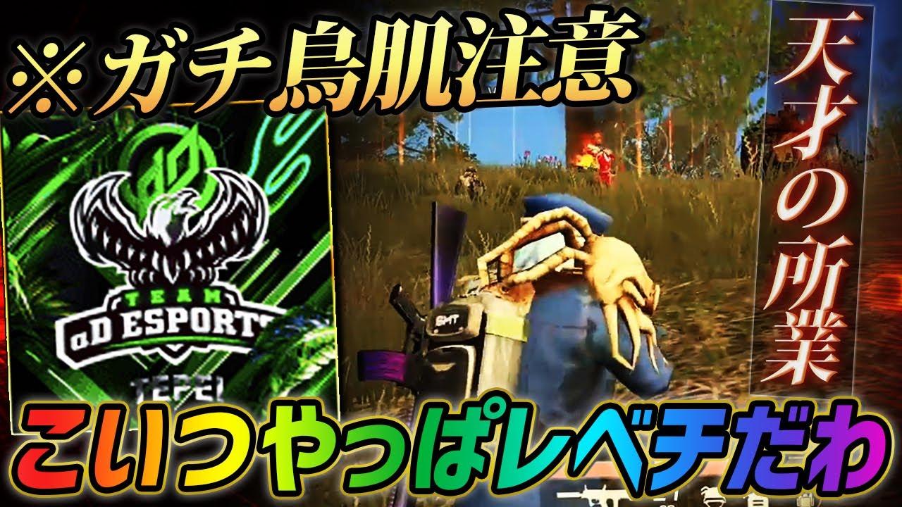 【荒野行動】マジで天才、最強。αD小田哲平こいつやっぱりレベチだわ。