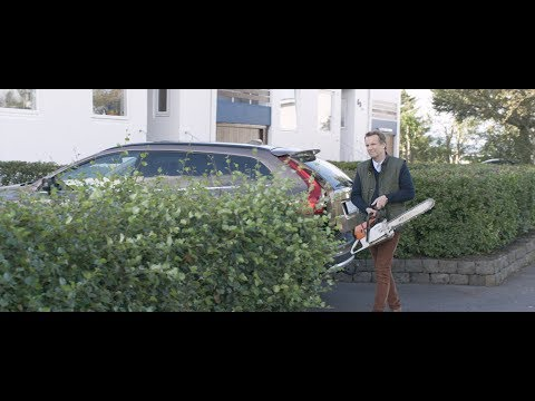 Under The Tree - Trailer